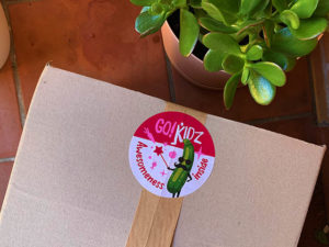 Go! Kidz Box