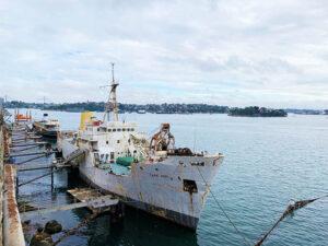 The Coal Loader - Ship