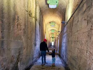 Coal Loader Tunnel - Balls Head Reserve