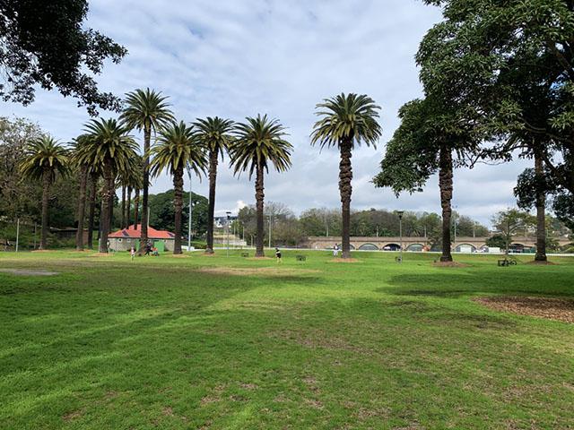 Open lawn at Jubilee Park