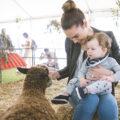 Sydney Family Show-Animal Nursery