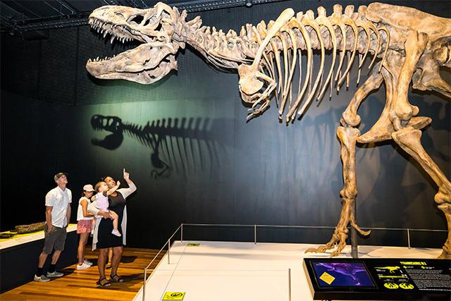 Tyrannosaurs Meet the Family exhibition - Australian Museum